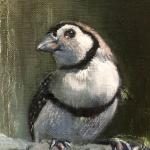 BIRD WATCHING (Detail)