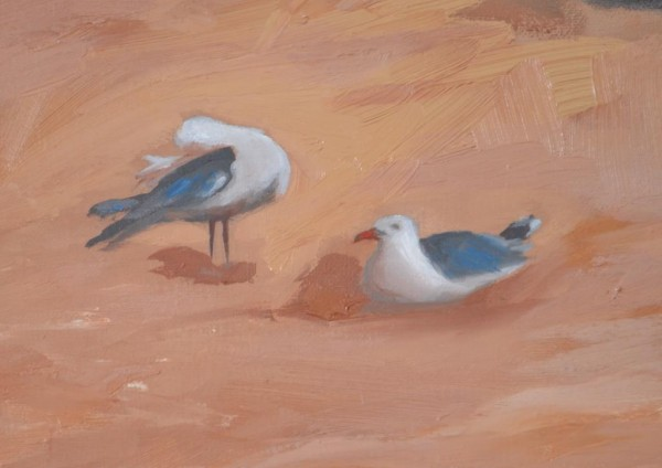 EH Manly Detail Seagulls Low res